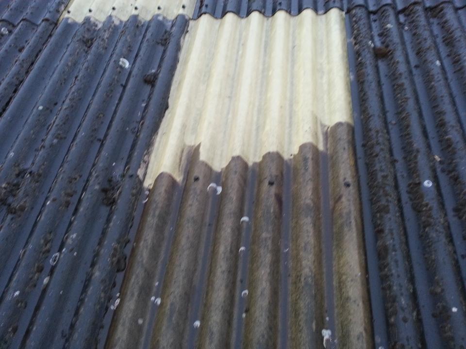 daken schoonmaken